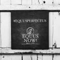 Equus Now! USA Logo