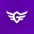 EsportsGear USA Logo