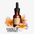 Essence Of Essentials Logo