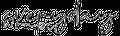 Everyday Wraps Logo