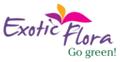 Exotic Flora India Logo
