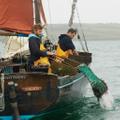 Fal Oysters - Mylor Cornwall Logo