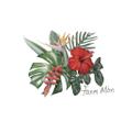 Fanm Mon Logo