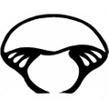Far West Fungi Logo