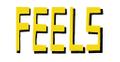 FEELS NYC USA Logo