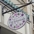 Fig Botanicals Logo