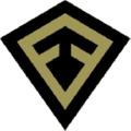 First Tactical Logo