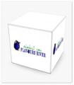 Flavoursriver Logo
