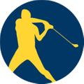 FlingGolf® Logo