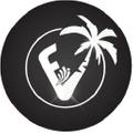 Florida Vibez Logo