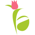 Flower Aura Logo