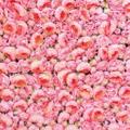 Flower Vault Logo