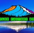 Flowfactorynw USA Logo