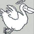 Flying Dodo Logo