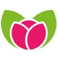 Flying Flowers UK Logo