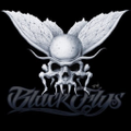 Black Flys USA Logo