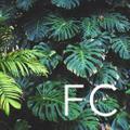 Folia Collective Logo