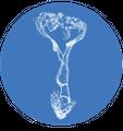 Freedive Nomad Logo
