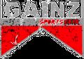 Gainz Sportsgear LLC. logo
