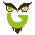 Geekyget Logo