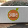 Georgia Crafted Logo