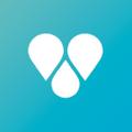 Findster Logo