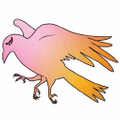 Gold Crow Co. Colombia Logo
