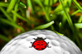 Golf Dotz Logo