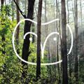 goodeehoo Logo