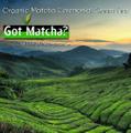 Got Matcha Logo