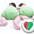 Green Mommy Store Logo
