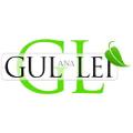 Gullei Logo