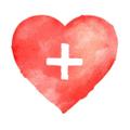 Hammer + Vine Logo