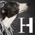 Harriott & Hound Logo