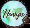 Havyn Internationa logo