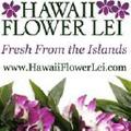 Hawaii Flower Lei logo