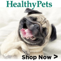 HealthyPets Logo