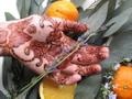 Henna Caravan Logo