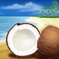 Herbal Island, Logo
