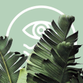 Hidden Coast Colombia Logo