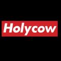 Holyw Ejuice logo