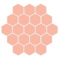 Honeybum Logo