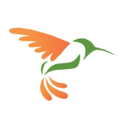 Hummingbird Networks Logo