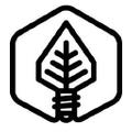 Hybrid Light Official Logo