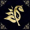Hynaughty Lashes Logo