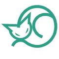iCaty USA Logo