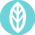 Mint Wellness CBD logo
