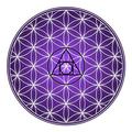 InnerVision Crystals USA Logo