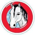 INOSTREAM, Logo