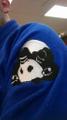 Inverted Gear Logo